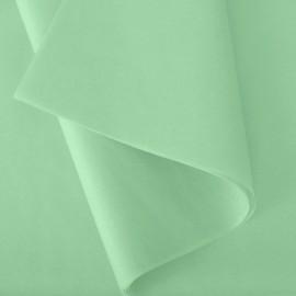 Papier de soie: Vert d'eau n°73